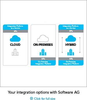 Your integration options with Software AG