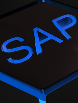 SAG_Tridion_ ARIS-for-SAP-Solutions_Feb18