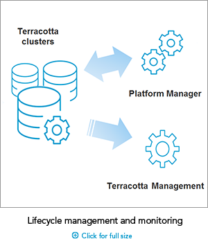 SAG_Lifecycle_Management_Small_Oct17_TDB