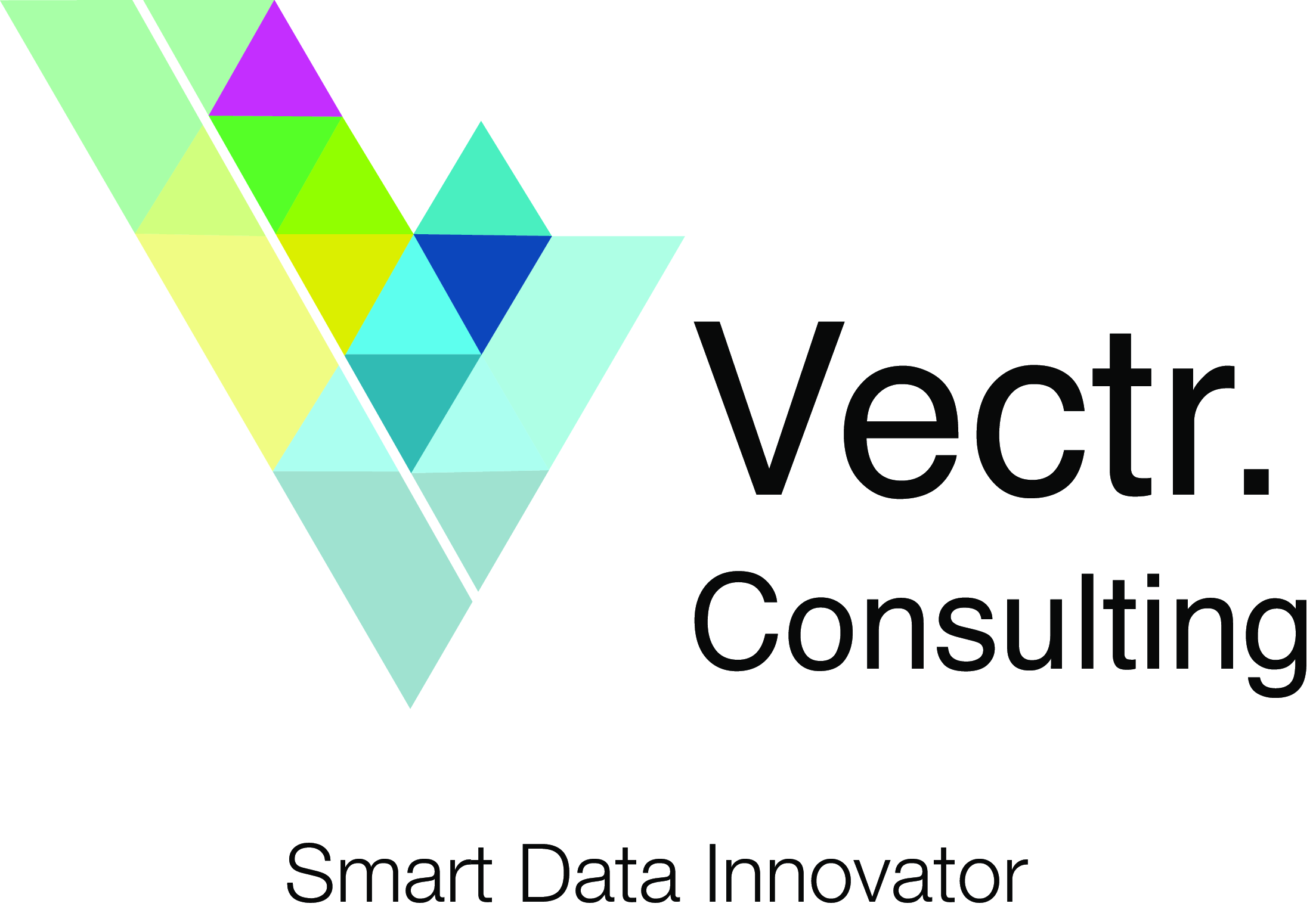 Vectr.Consulting NV logo